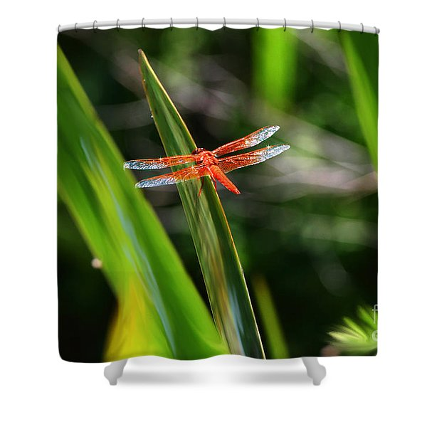 Sparkling Red Dragonfly Shower Curtain