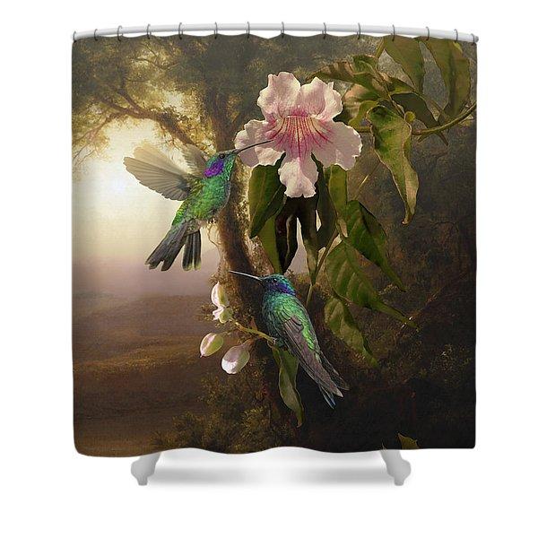 Sparkling Violetear Hummingbirds And Trumpet Flower Shower Curtain