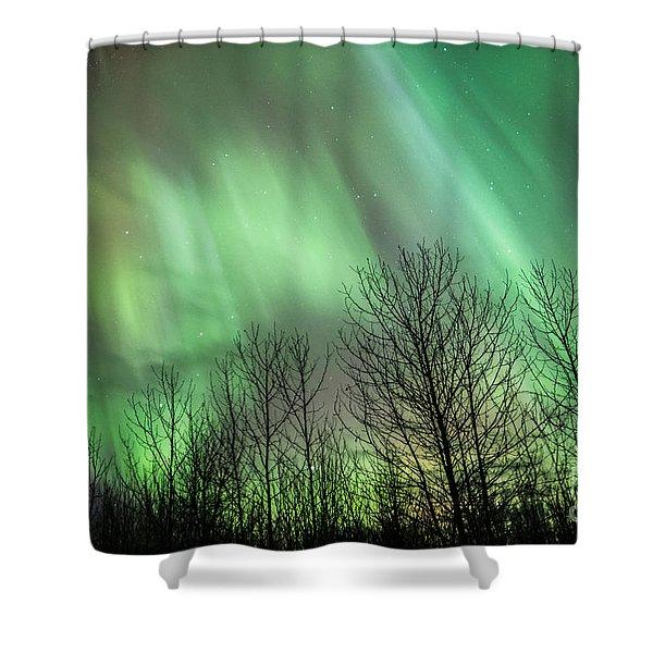 Spectacular Lights Shower Curtain