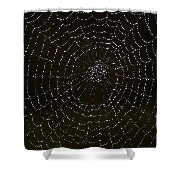 Spider Cobweb  Shower Curtain