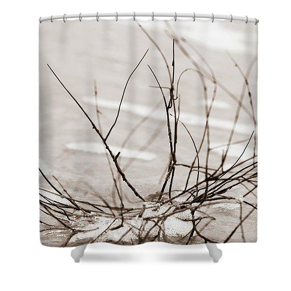 Spider Driftwood Shower Curtain
