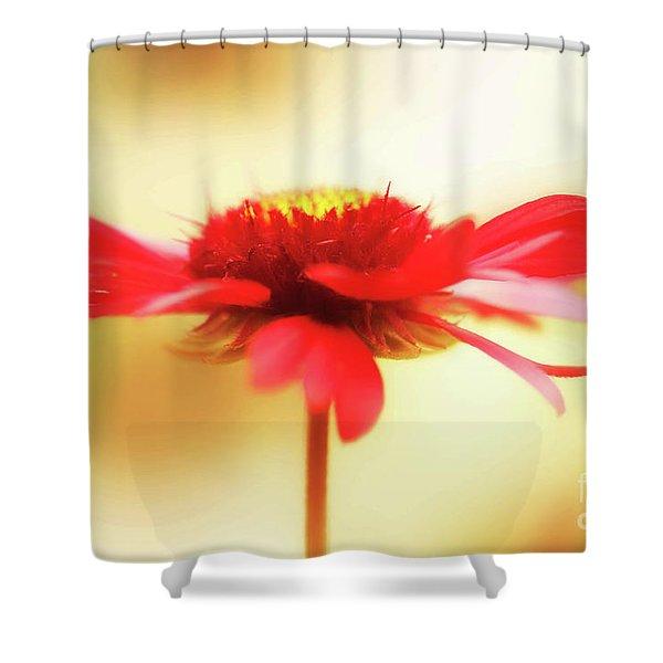 Spinning Firewheel Shower Curtain