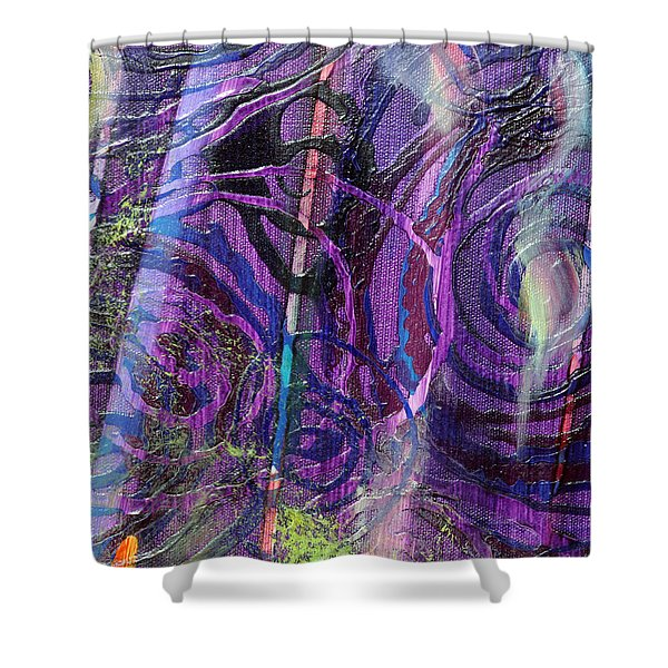 Spiral Detail From Annunciation Shower Curtain