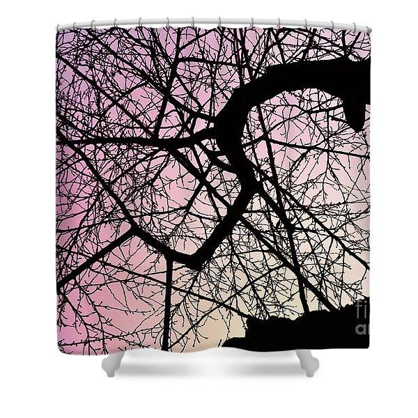 Spiral Tree Shower Curtain