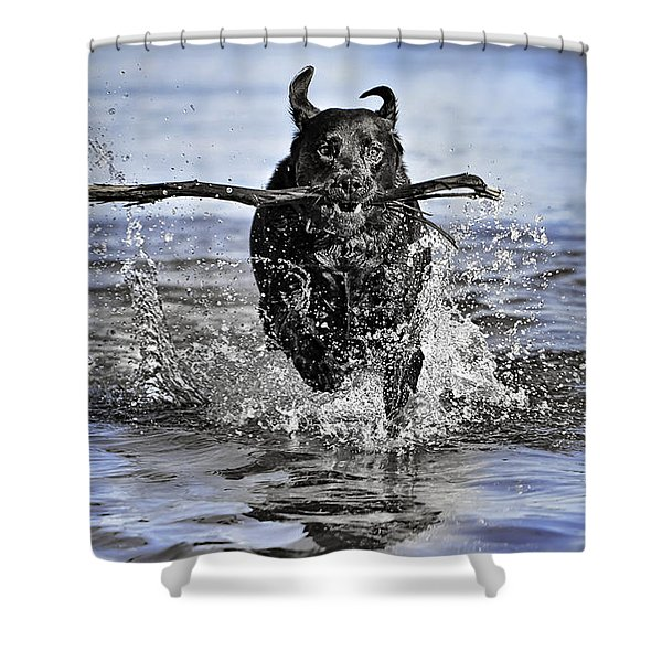 Splashing Fun Shower Curtain