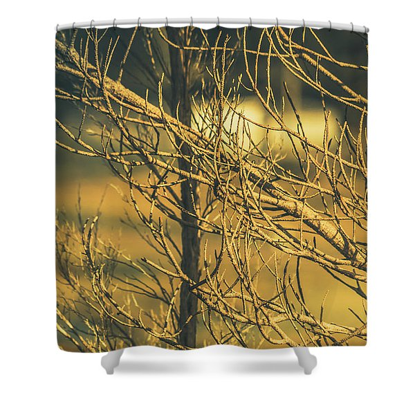 Spooky Country House Obscured By Vegetation  Shower Curtain