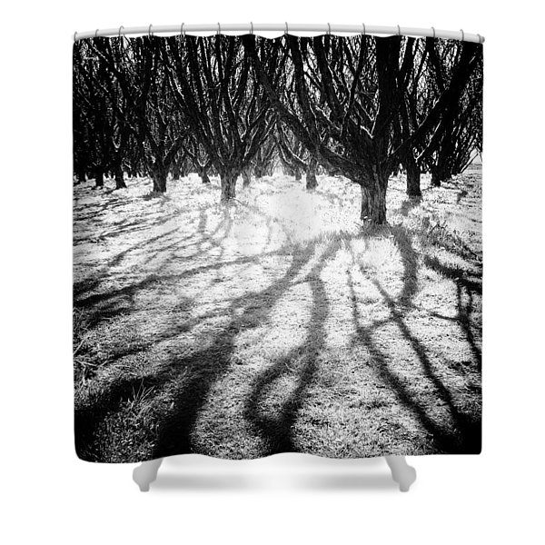 Spooky Forest Shower Curtain