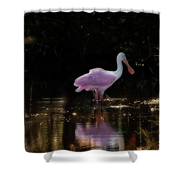 Spoonbill Fishing For Supper Shower Curtain