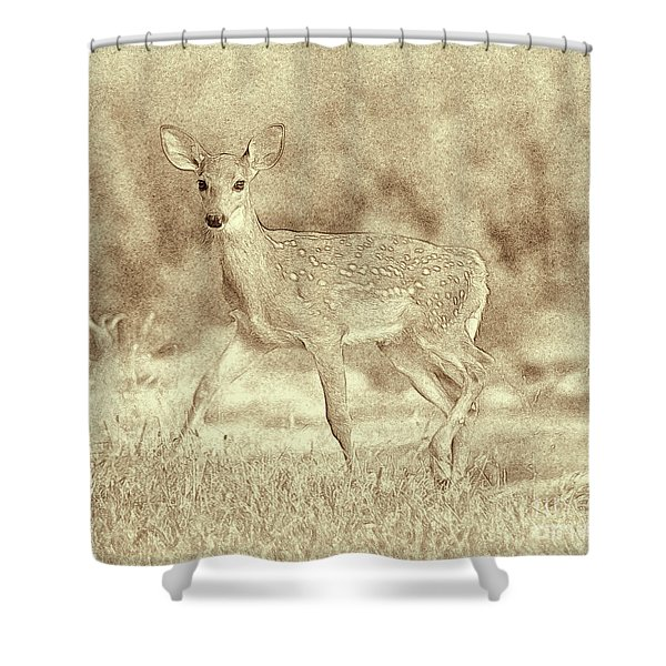Spotted Fawn Shower Curtain