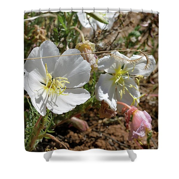 Spring At Last Shower Curtain