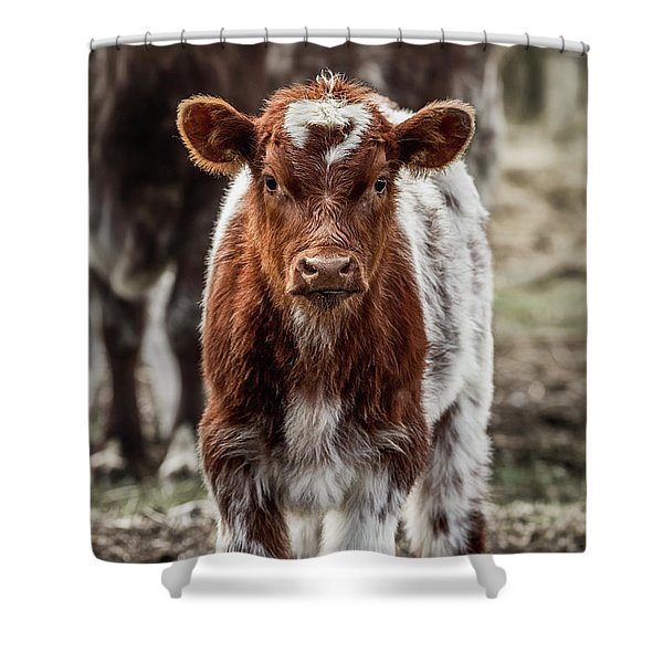 Spring Baby Shower Curtain