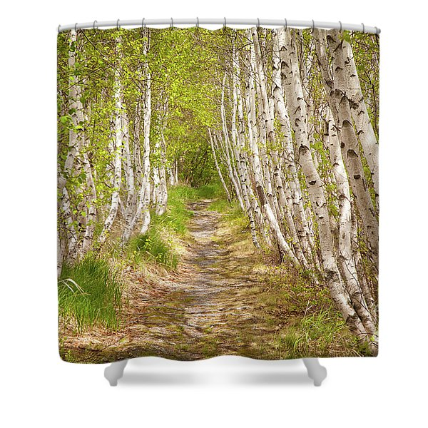 Spring Birch Shower Curtain