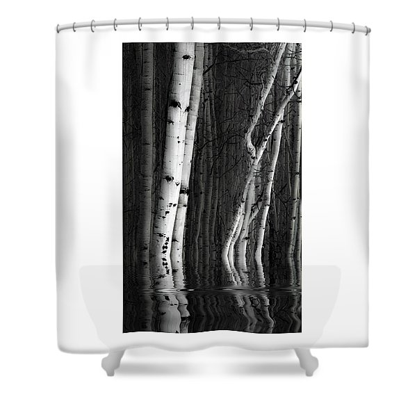 Spring Cleaning Shower Curtain