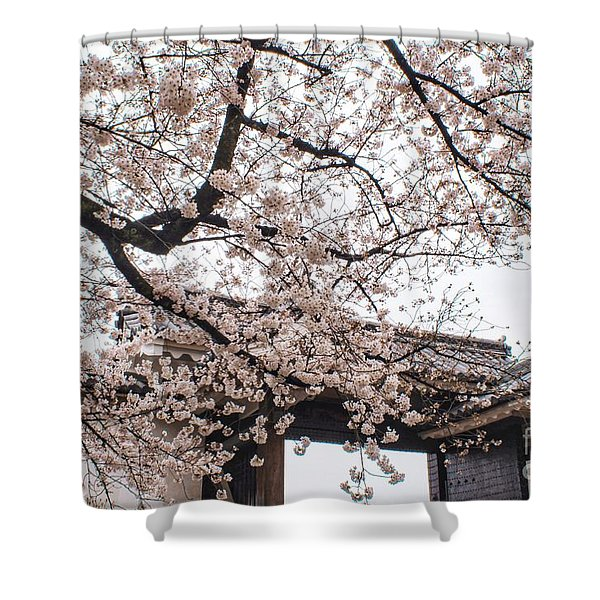 Spring Cult Shower Curtain