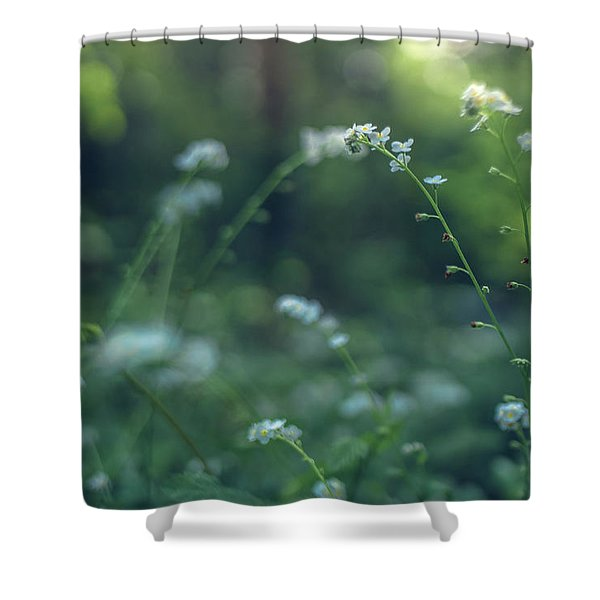 Spring Garden Scene #1 Shower Curtain