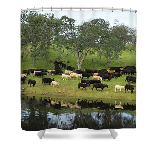 Spring Gather Shower Curtain
