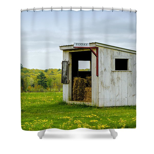 Spring Hay Shower Curtain