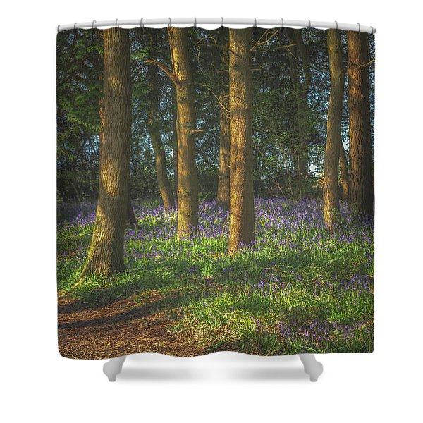 Spring In Haywood No 3 Shower Curtain