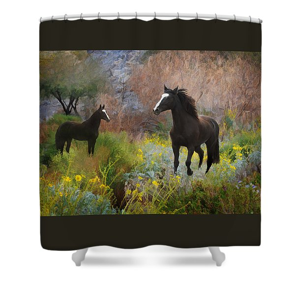 Shower Curtain featuring the photograph Spring Play by Melinda Hughes-Berland