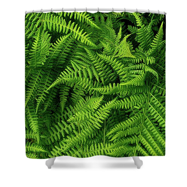 Spring Salad Shower Curtain