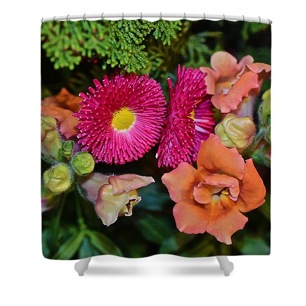 Spring Show 15 Snapdragons And English Daisy Shower Curtain
