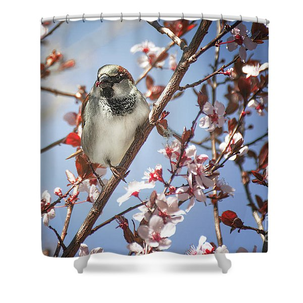 Good Place For A Snack Shower Curtain