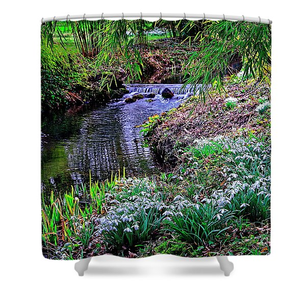 Spring Snowdrops By Stream Shower Curtain