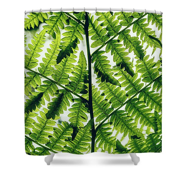 Spring Symmetry Shower Curtain