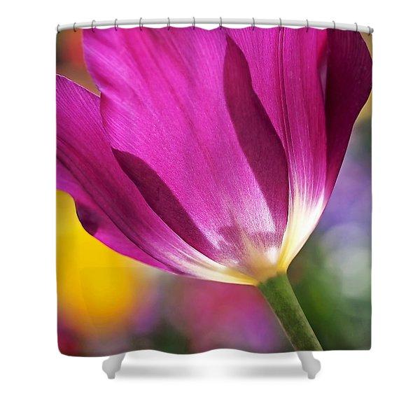 Spring Tulip Shower Curtain