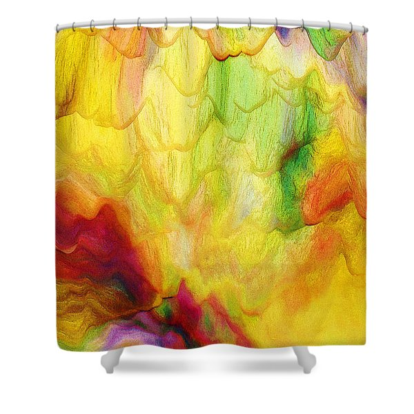 Spring Two 030216 Shower Curtain