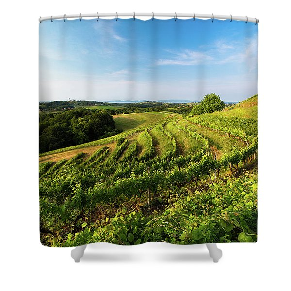 Spring Vinyard Shower Curtain