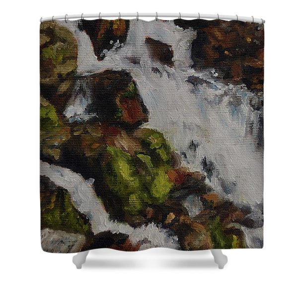 Springs Close Up Shower Curtain
