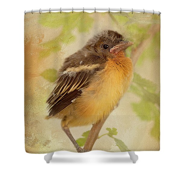 Spring's Sweet Song Shower Curtain