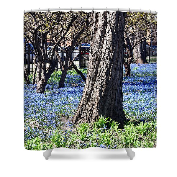 Springtime In The City Shower Curtain