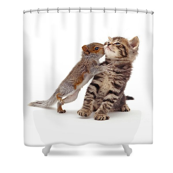 Squirrel Kiss Shower Curtain