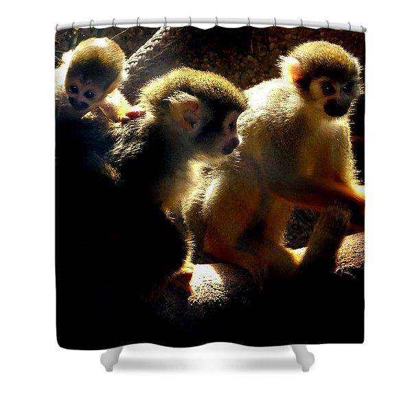 Squirrel Monkey Shower Curtain