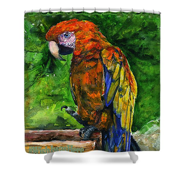 St. Maarten Shirt Shower Curtain