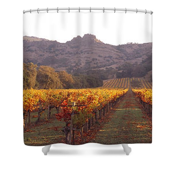 Stags Leap Wine Cellars Napa Shower Curtain