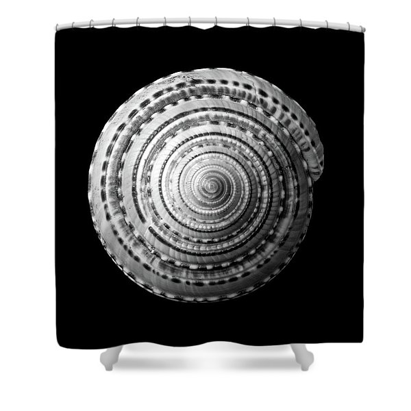 Staircase Or Sundial Shell  In Black And White Shower Curtain