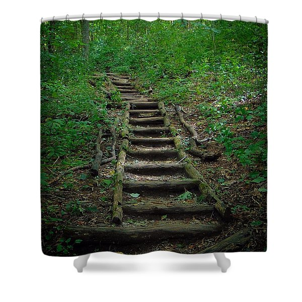Stairway At Unicoi Gap On The At Shower Curtain