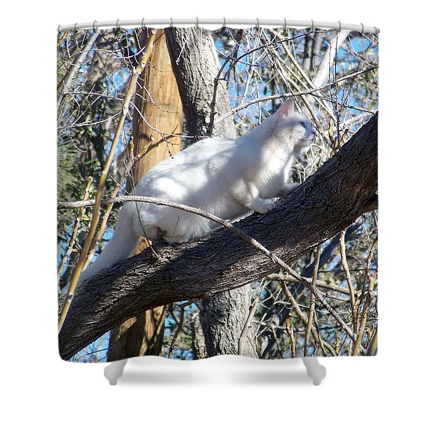 Stalking Ghost Shower Curtain
