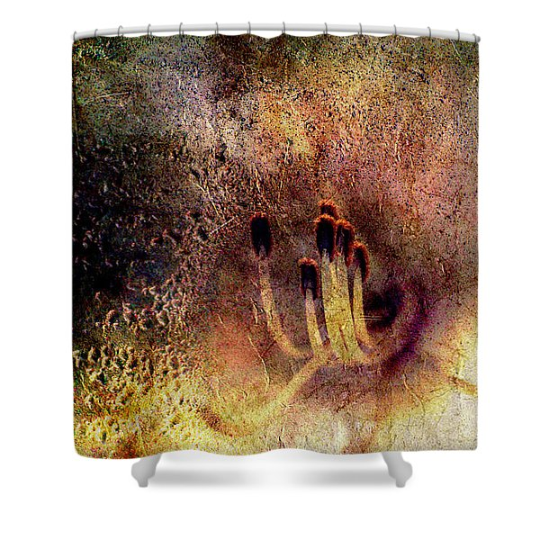 Stamins Of A Daylily Shower Curtain