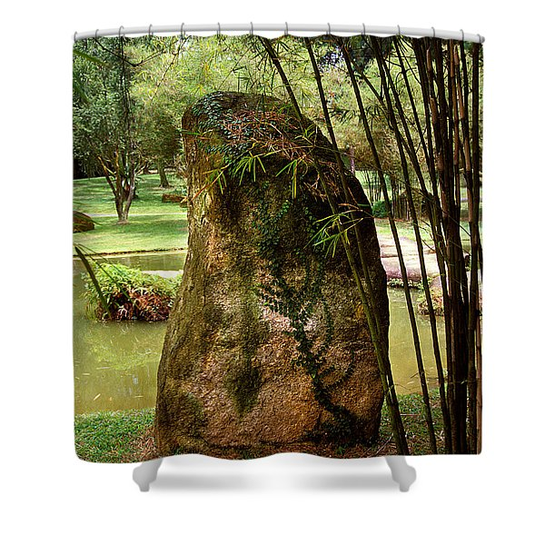 Standing Stone With Fern And Bamboo 19a Shower Curtain