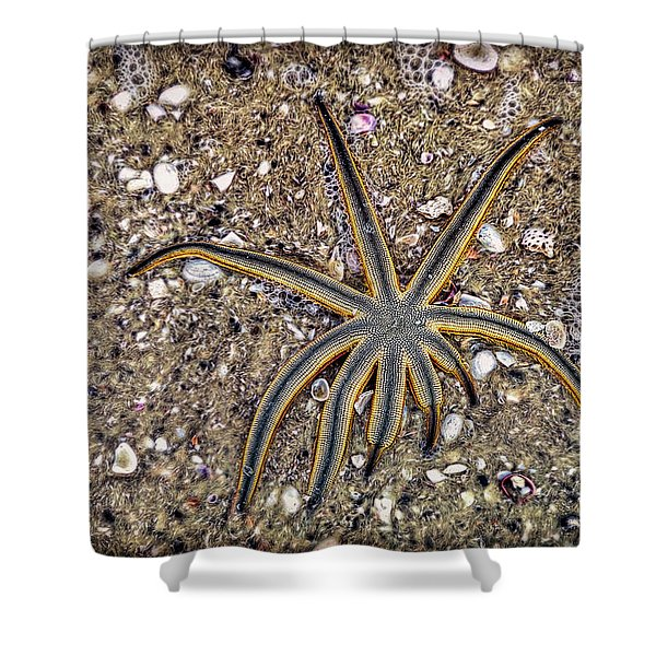 Starfish On The Beach Shower Curtain