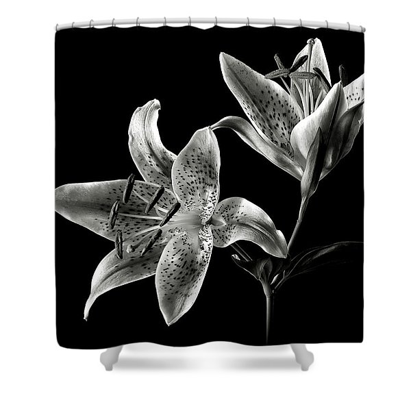 Stargazer Lily In Black And White Shower Curtain