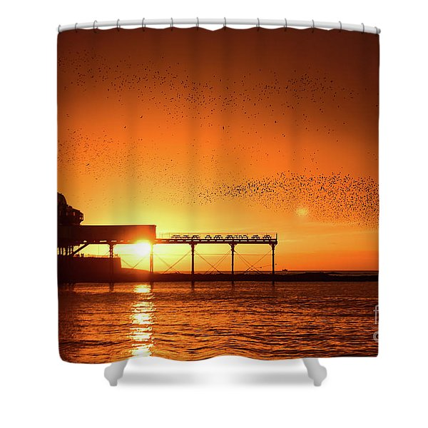 Starlings At Sunset Over Aberystwyth Pier Shower Curtain