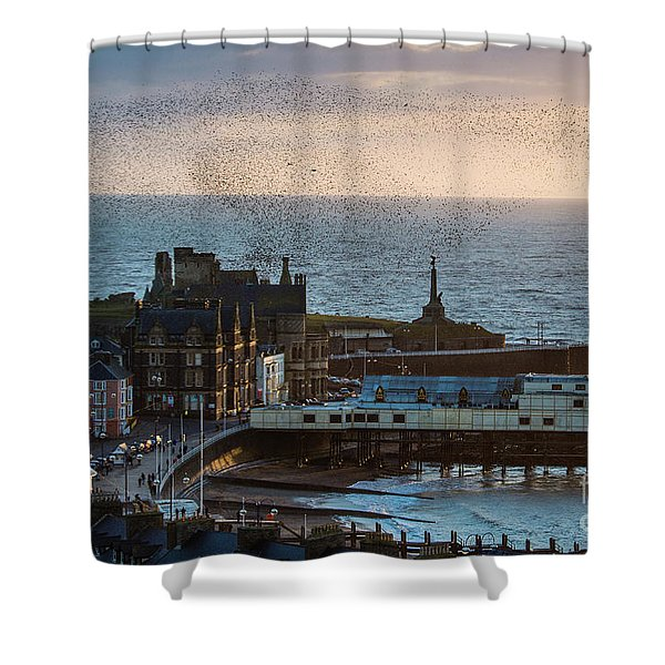 Starlings Over Aberystwyth On The West Wales Coast Shower Curtain