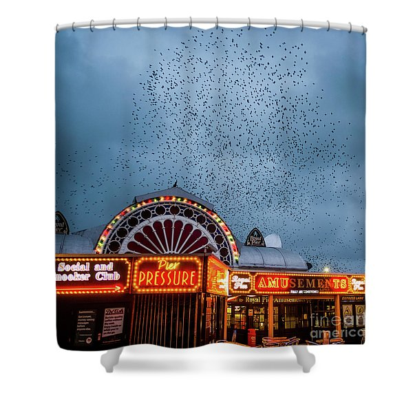 Starlings Over The Neon Lights Of Aberystwyth Pier Shower Curtain