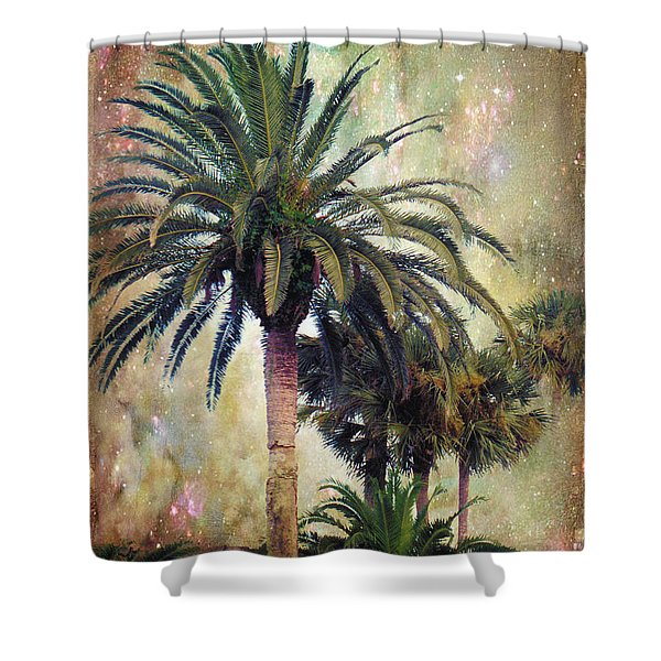Starry Evening In St. Augustine Shower Curtain