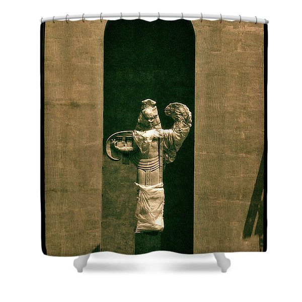 Statues Individual #3 Shower Curtain